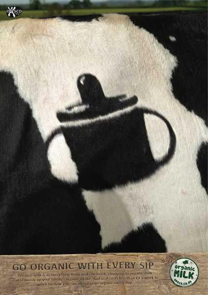 OMSCO,牛奶,有机
