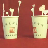 纸杯的爱情-quicktime